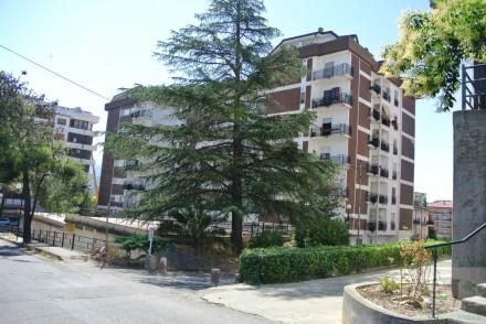 Codice annuncio: Appartamento Rende5017 - 1