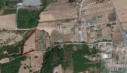 Codice annuncio: Terreno Montalto Uffugo7719 - 1